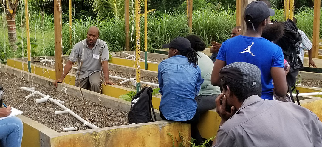 Increasing Access to Climate-Smart Agriculture Training